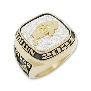 Championship Series Multiple Stone Option Men's All Metal Ring